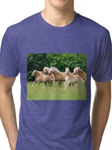 Running herd of Haflingers  Tri-blend T-Shirt