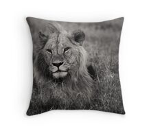 Male Lion in Kenya Throw Pillow