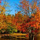 Bridge to Autumn  by Chris H. P.