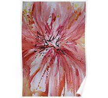 Silk Petals  Poster