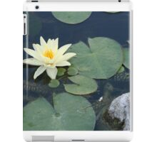 Water lily with rock iPad Case/Skin