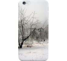 Apple Orchard in Winter iPhone Case/Skin