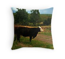 Bovine Visitors Throw Pillow