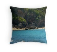 Fishing Asia Throw Pillow