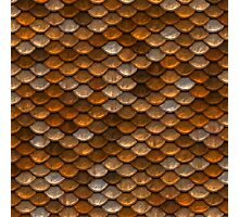 Earthy Abstract Scale Pattern Photographic Print
