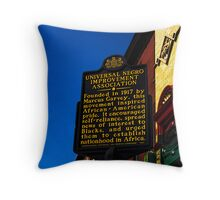 This is not history Throw Pillow