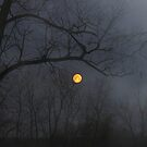 misty moon by kathy s gillentine