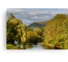 Autumn Evening Along Trout Run Creek Canvas Print