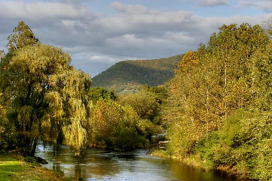 Autumn Evening Along Trout Run Creek by Gene Walls