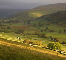 Up Dale to Starbotton by Andrew Leighton