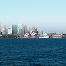 Fog over Sydney by Donna Rondeau