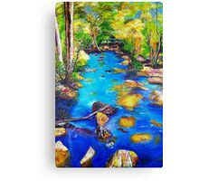 Pulsating with energy (The Creek) Canvas Print