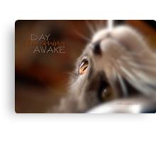 Day Dreaming Awake © Vicki Ferrari Photography Canvas Print