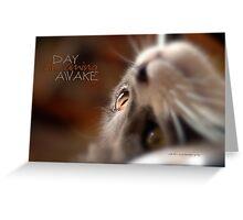 Day Dreaming Awake © Vicki Ferrari Photography Greeting Card