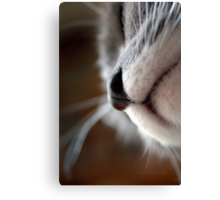 By A Nose © Canvas Print