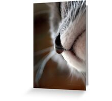By A Nose © Greeting Card