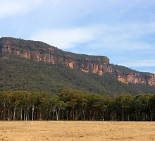 Megalong by Matthew Smith