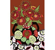 Corymbia Ficifolia Photographic Print