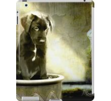 Paws For Thought iPad Case/Skin