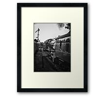 Waiting for the whistle and flag Framed Print