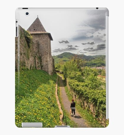 Walking through dandelions and history iPad Case/Skin