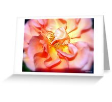 Lovely As A Summers Day................. Greeting Card