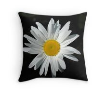 Daisy... Daisy Throw Pillow