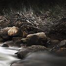 Murchison River by Tatiana R