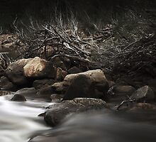 Murchison River by Tatiana R