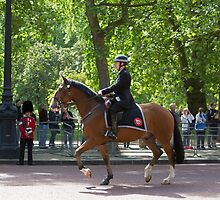 Police officer on horseback at the State Opening Of Parliament London by Keith Larby