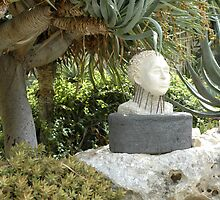 A Sculpted Head In Amongst The Cacti by Michael Redbourn