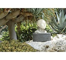 A Sculpted Head In Amongst The Cacti Photographic Print