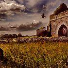 Irish Graveyard by John Walsh, IRELAND