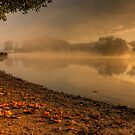 Autumn Mist at Sunrise by Martin Griffett