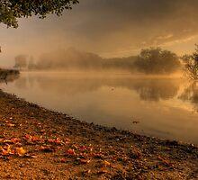 Autumn Mist at Sunrise by Martin Griffett