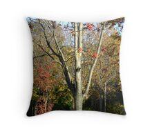 Autumn herald - tree & berries, Burntisland 2009 Throw Pillow