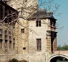 Laarne Castle - Belgium by Gilberte