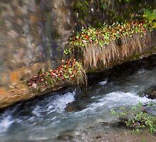 autumn river by Bogdan Ciocsan