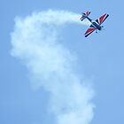 Air Showy by Linda Costello Hinchey