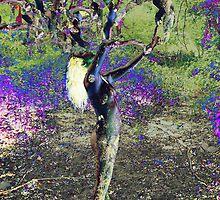 Femme arbre by Auquier