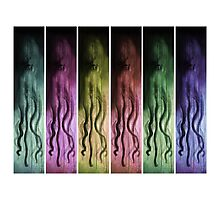 Rainbow Squid Photographic Print