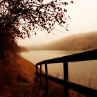 Autumn Mist - North Saskatchewan River by Roxanne Persson