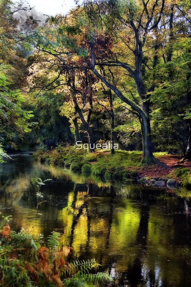 Autumnal River Devon by Squealia