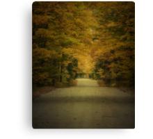 Autumn Drive ~ Experiment in Texture Canvas Print