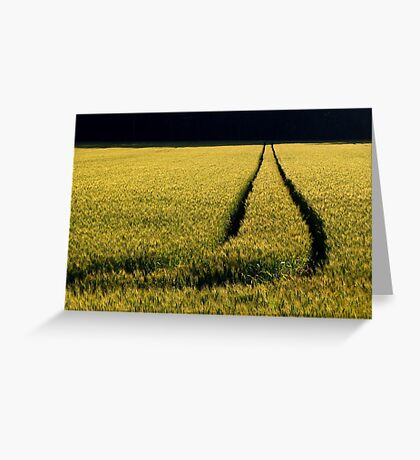 Fields of Slovenia Greeting Card