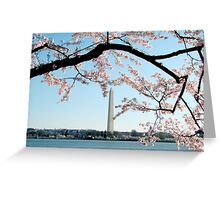 Washington DC - Cherry Blossom Greeting Card