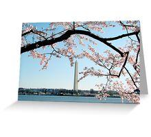 Washington DC - Cherry Blossom Greeting Card