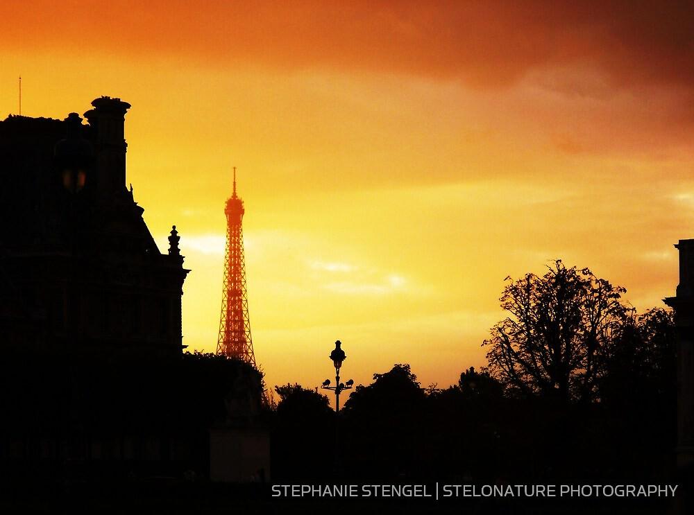 Dusk in Paris by STEPHANIE STENGEL   STELONATURE PHOTOGRAPHY