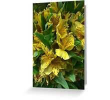 Yellow Iris Flower Bouquet Greeting Card