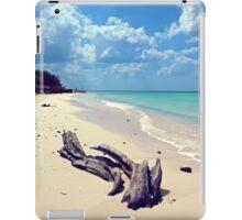 Driftwood iPad Case/Skin